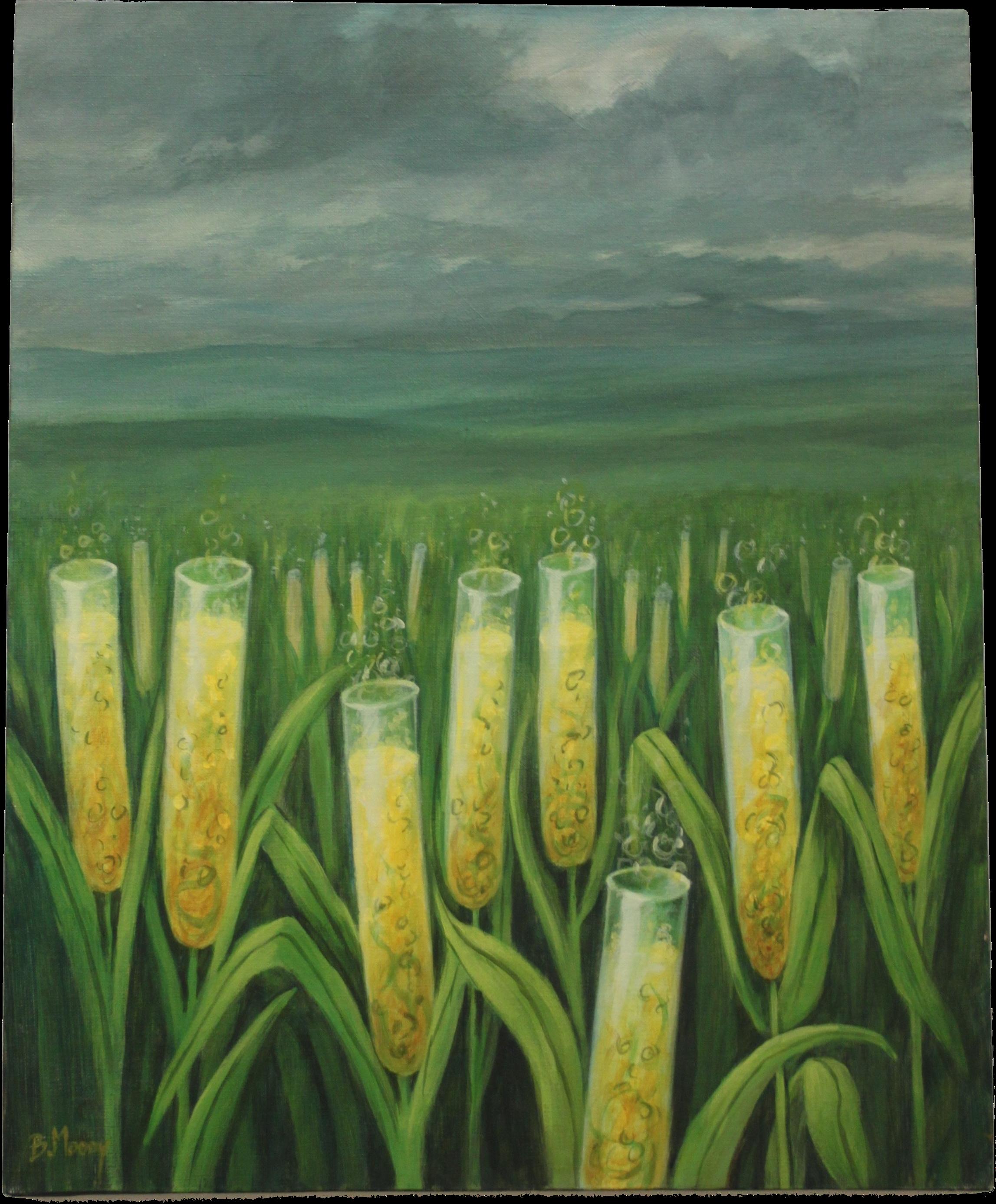 Een beeld uit Sow to Grow in Kunst : Magic Mais